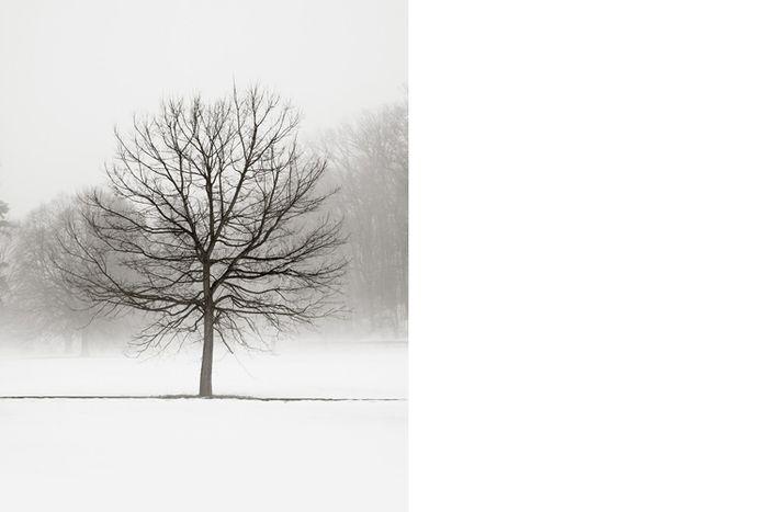 Winter_JenniferSRoss